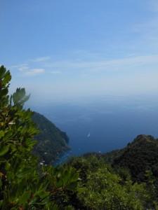la baia di S. Fruttuoso dal monte di Portofino