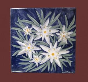 stelle alpine dipinte su piastrella