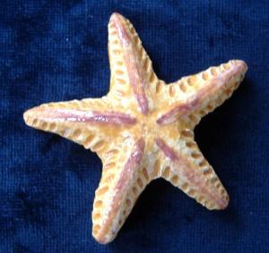 stella marina in ceramica,bomboniera per matrimonio