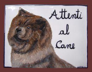 Targa attenti al cane