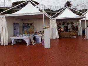 Esposizione a Nervi Artigiani Liguria