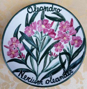 Nerium Oleander, Oleandro