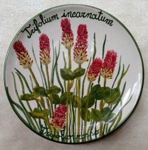 Trifoglio rosso, ceramica