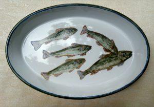 Centrotavola porcellana e pirofila pesci