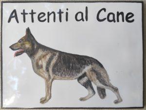 Attenti al cane con Pastore tedesco
