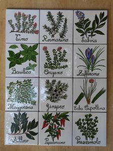 Le erbe aromatiche per la cucina, piastrelle dipinte a mano